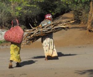 Africa development.jpg