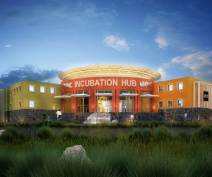 Incubation_Hub_article.jpg